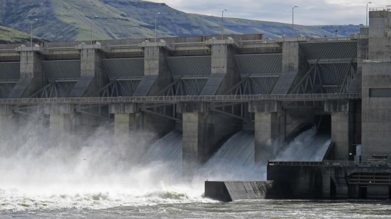 Water moves through a spillway of the Lower Granite Dam on the Snake River near Almota, Wash., one of four dams connected to a longstanding debate over salmon recovery.