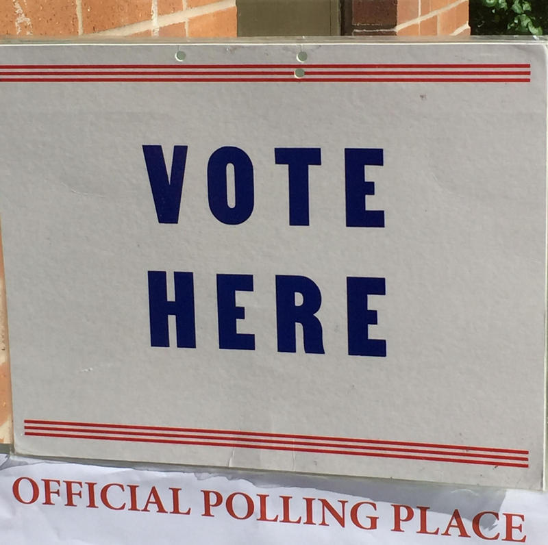 Voters are heading to the polls to decide political races across the state.