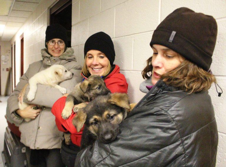 Volunteers at the Idaho Humane Society