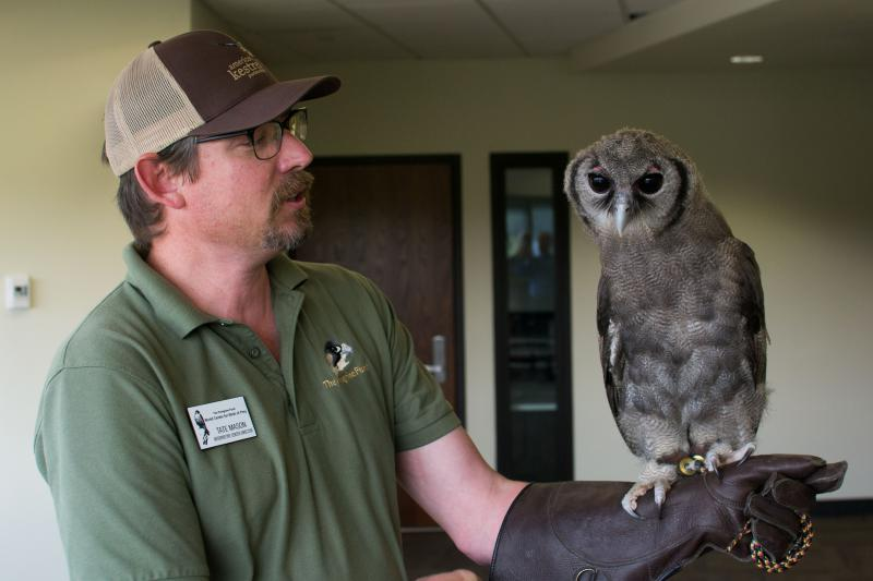Oliver, the milky eagle owl with Tate Mason, director of the World Center for Birds of Prey