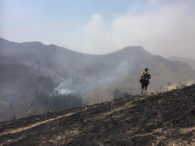 A Sawtooth Hotshot surveys fire activity on a ridge overlooking the fire, which started July 29th.