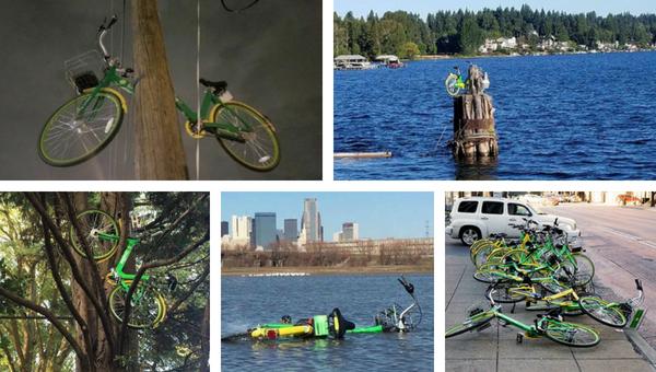 Dockless bike-share bikes abandoned around Dallas.