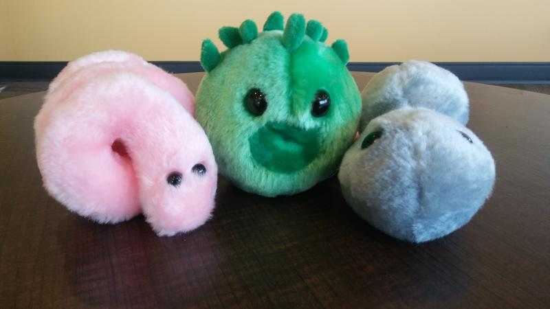 Drew Oliver creates plush toy replicas of microbes at 1,000,000 times their actual size. These syphilis, chlamydia and gonorrhea microbes are compliments of the Idaho Department of Health and Welfare.