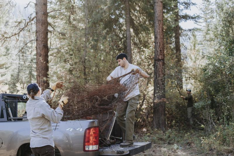 A volunteer with Backcountry Hunters and Anglers participates in a service day to celebrate public lands.