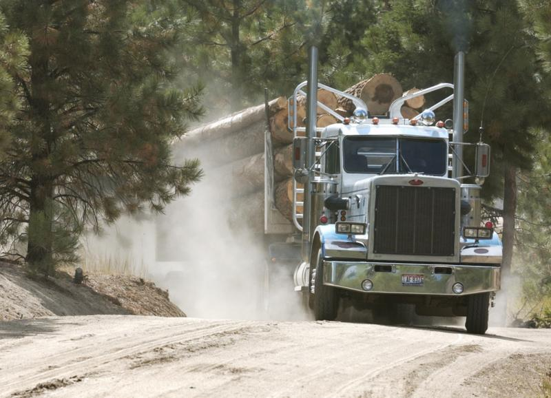 File photo of a truck hauling timber