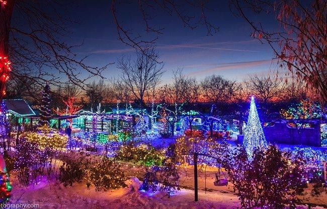 Idaho Botanical Garden's 'Winter Garden Aglow'