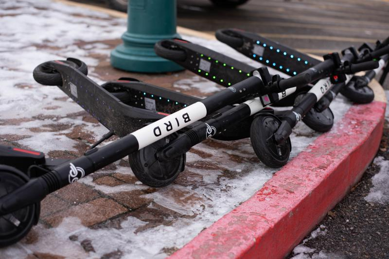 Several Bird e-scooters lay on an icy ground