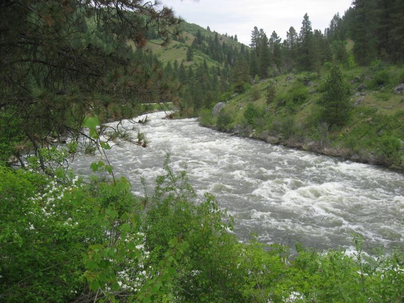 North Fork of the Payette River