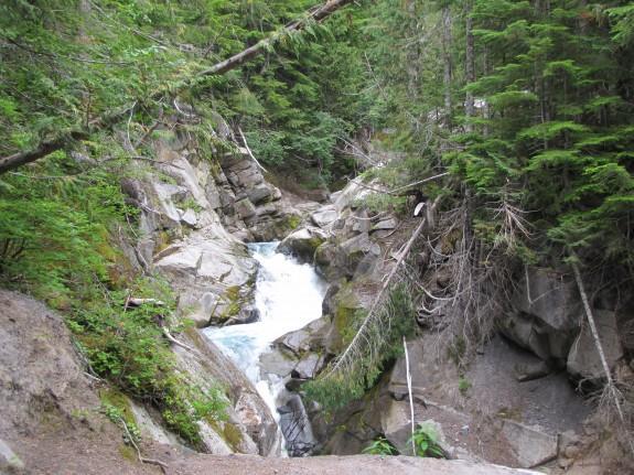 Van Trump Creek in Mt. Rainier National Park