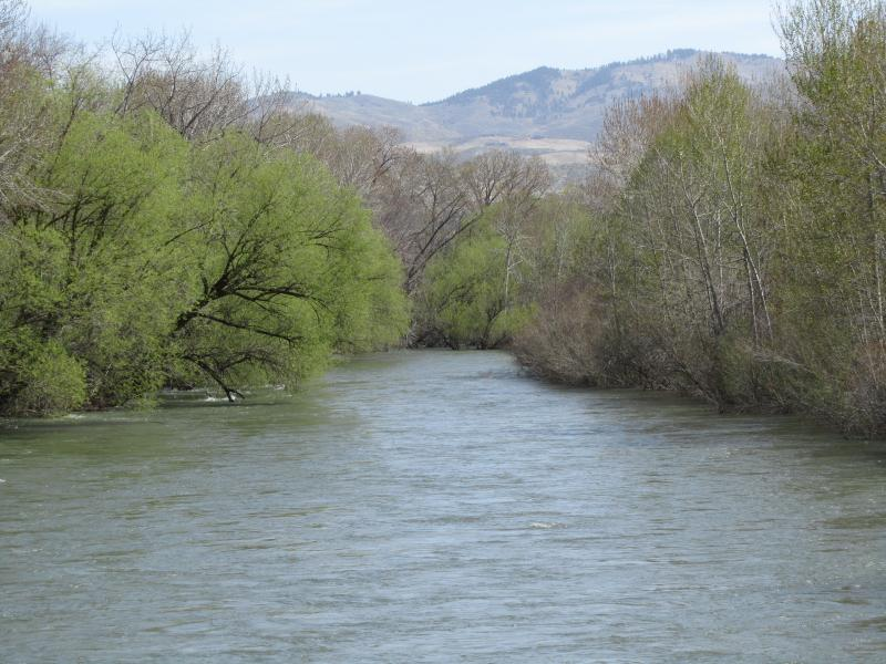 The Boise River Is Just Below Flood Stage