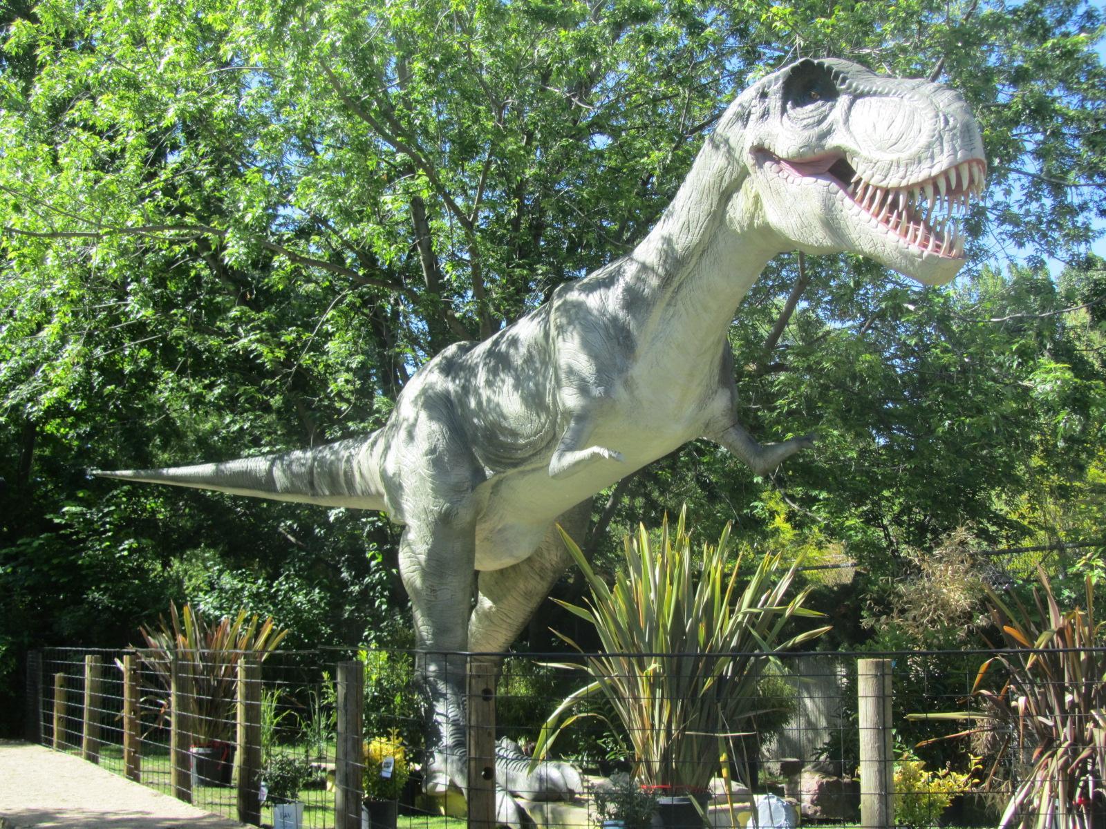 dinosaurs roar into zoo boise boise state public radio