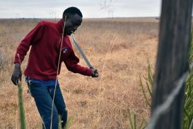 Farmhand Salim cuts grass along a fence near the proposed site of Konza Techno City.