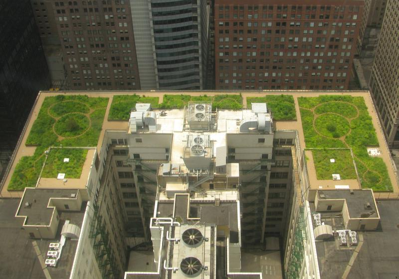 Chicago City Hall's green roof from above.