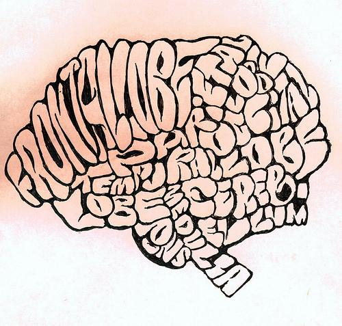This is your brain, reading our brain drain series.