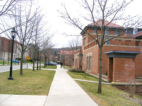 Alfred University is one of the 100+ not-for-profit colleges in New York referred to in the study