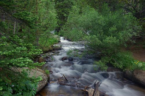 A stream in the Rocky Mountains