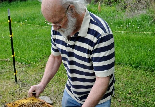 Peter Borst has kept bees since 1974