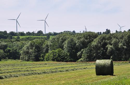 Wind turbines from the Maple Ridge Wind Farm