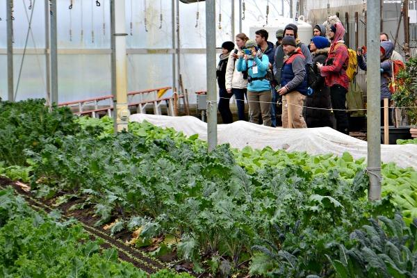 Young Farmers class on winter greenhouses