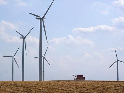 Photo of wind turbines in a field