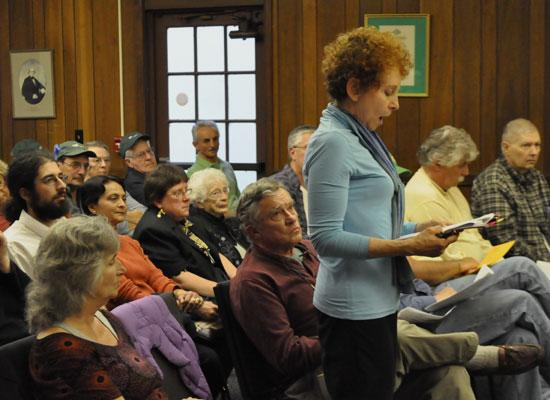 Sue Rapp presents a petition in support of a drilling moratorium at a Vestal town board meeting in May.