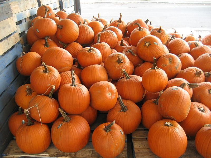 Tuesday Swing By For Last Minute Pumpkins. Use...