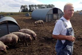 Farmer Paul Willis at his free range hog farm in Thornton, Iowa.