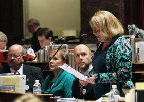 Sen Pam Jochum (D-Dubuque) introduces bill to expand Medicaid in the state before the full Senate on Monday March 25, 2013.