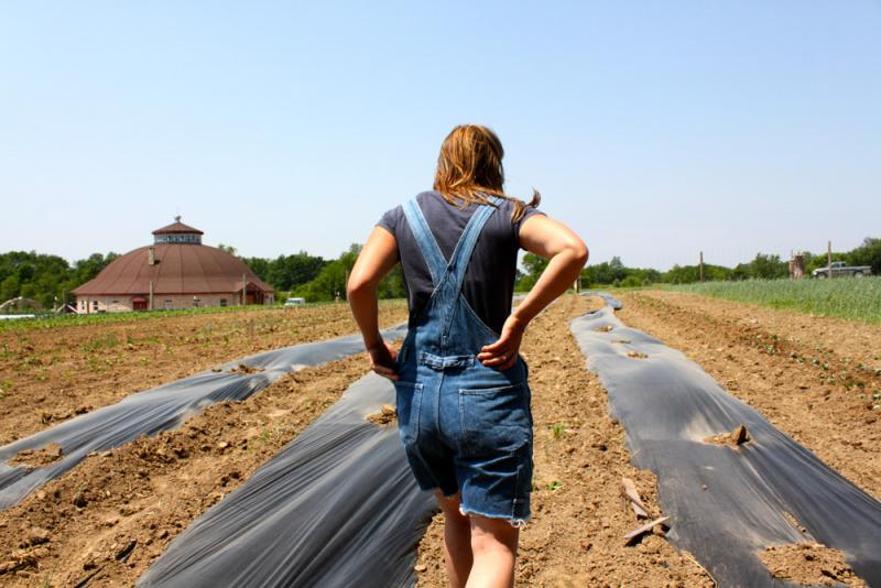 Edwards walks through rows of planted vegetables. Her CSA program feeds about 30 families.