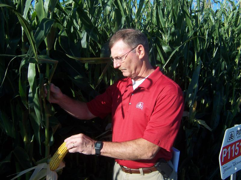 Pioneer agronomist Greg Luce inspects drought-resistant corn at the company's research farm in Johnston, where drought conditions have not been severe.