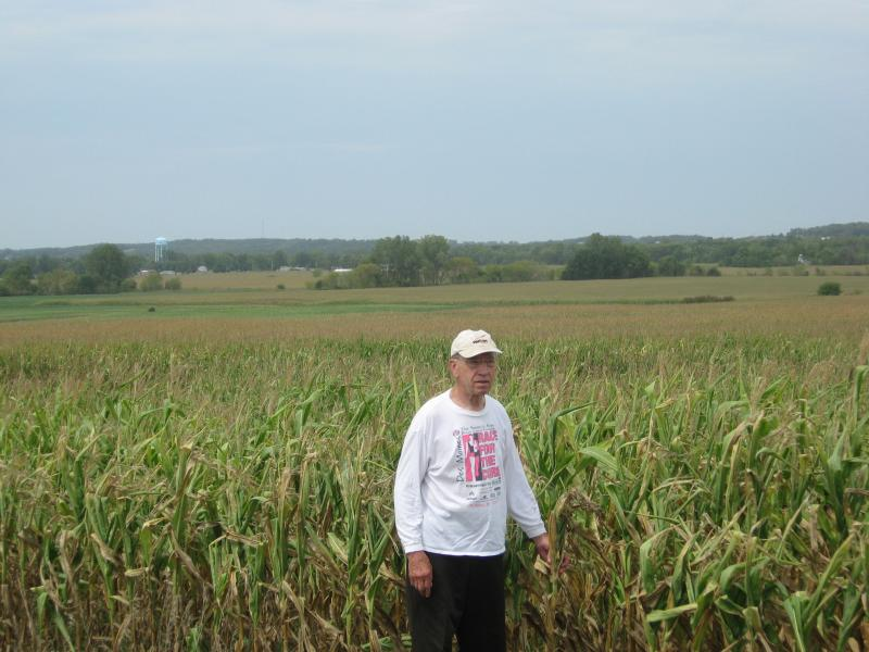 Senator Chuck Grassley stands in his cornfield near New Hartford. In a non drought year, the corn should be green and at least six feet tall.