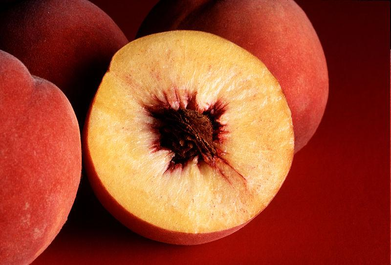 The Spotted Wing Drosophila Fly is attracted to softer fruit, like peaches, to lay their eggs.