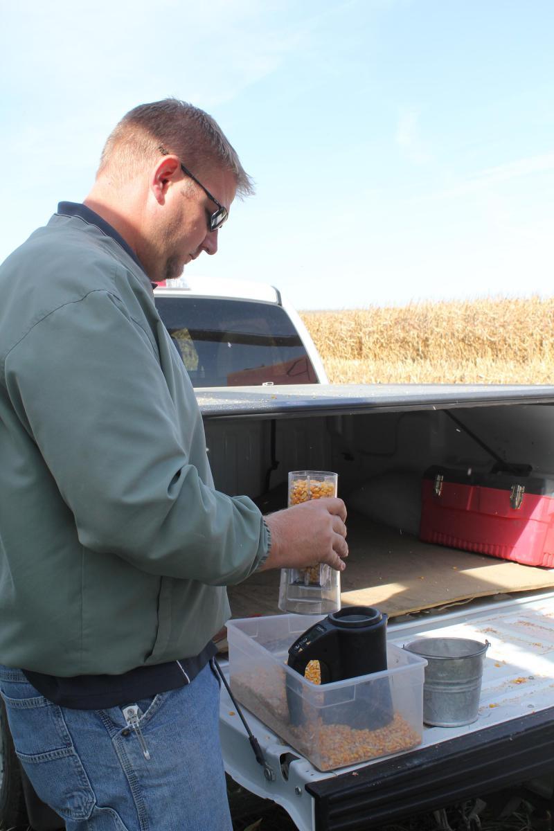Syngenta sales rep Mitch Lobeck gathers data on corn in Maxwell, Iowa.