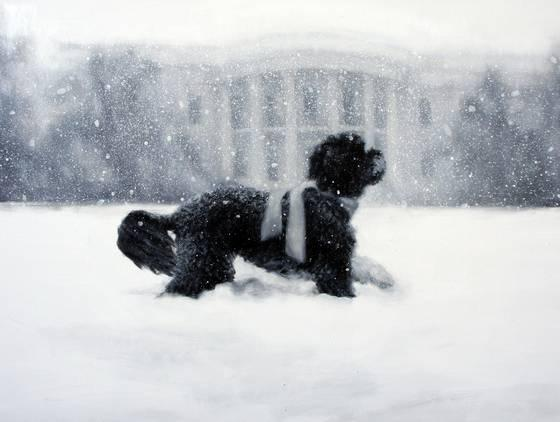 "Larassa Kable's oil painting ""Bo in the Snow"" is the cover for this year's official White House Christmas card."