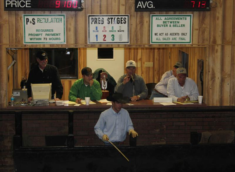 Sale barns like the Green City Livestock Market in central Missouri are where some cow-calf operators sell their stock up the industry foodchain.