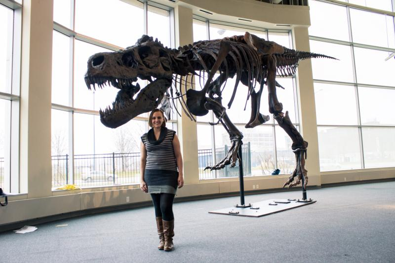 IPR's Sarah McCammon stands in front of Sue the T-Rex. The dinosaur measures 12 feet tall at the hip. The replica will be on display beginning Feb. 2 at the Science Center of Iowa in Des Moines.