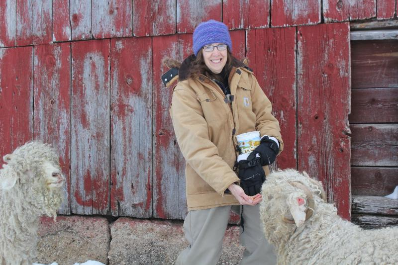 Marilyn Andersen of Story City feeds her angora goats, whose wool she spins and weaves. Andersen will soon be buying individual health insurance.