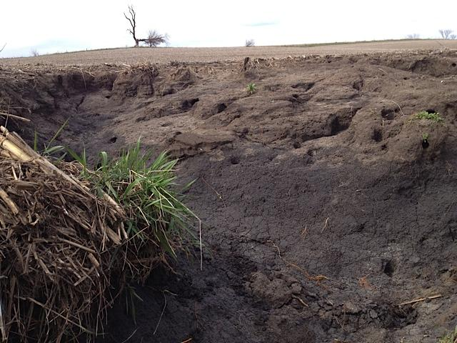 Erosion in an Iowa agricultural field, April 25, 2013.