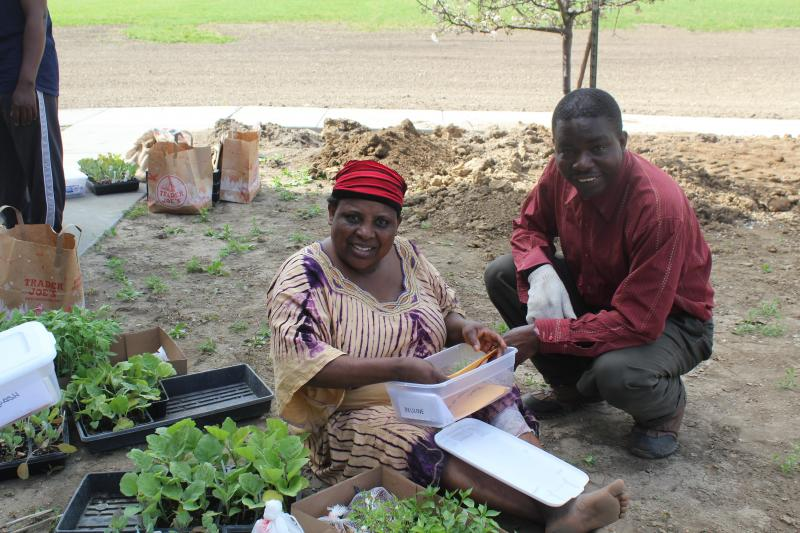 Originally from Burundi, Beuline Bucumi (left) and Bizimana Charles look through the seeds Bucumi will plant. Both of these Des Moines residents will raise crops at Global Greens Farm.