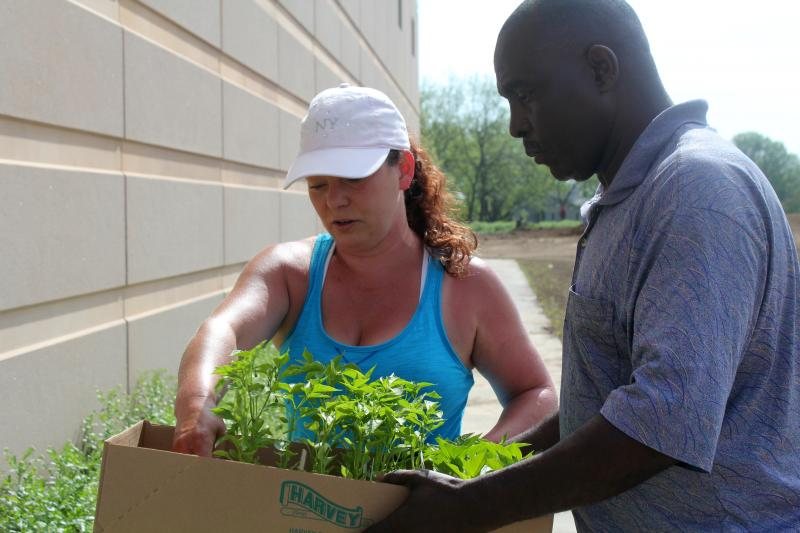 Lutheran Services of Iowa farm assistant Donna Wilterdink gives transplants to Cubwa Rajabu, who is cultivating a plot at Global Greens Farm.