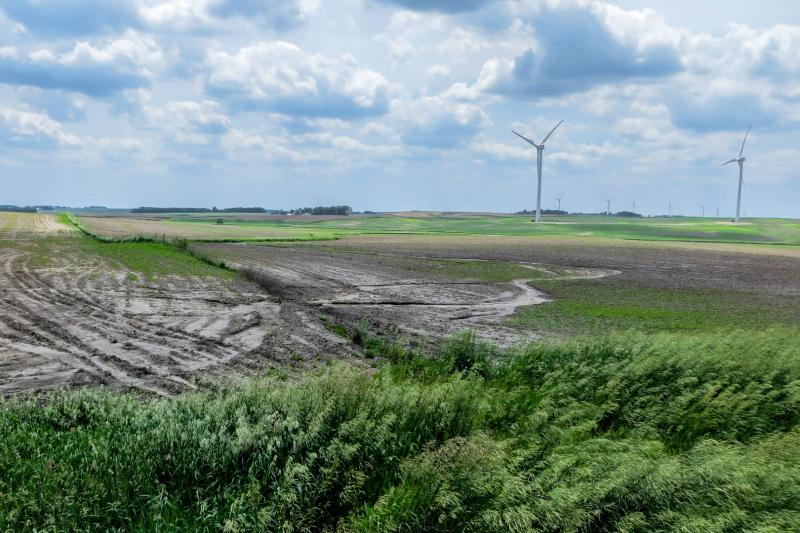 Farm fields stymied by frequent rain are well past optimum planting dates making thousands of acres unproductive this season. Farmers hope to be able to seed cover crops to prevent wind and water from eroding the barren top soil.