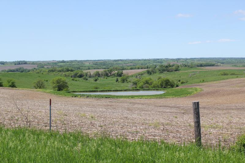 The lack of federal policy, farmers say, makes planning their fields for next year difficult. These fields in Guthrie County were photographed in early June.