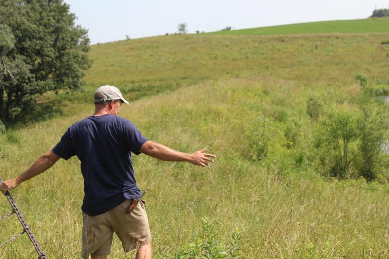 Southwest Iowa cattleman Seth Watkins revels in the tall grasses and clear ponds on his pastureland. He says prairie helps his cattle, his business, the soil and the water.