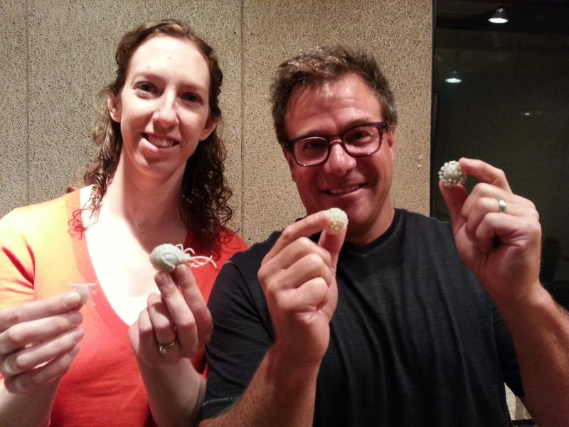 Mark Ginsberg and Dr. Maggie Chorazy show the 3D printed models of their work