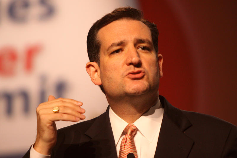 Freshman Senator Ted Cruz (R-Texas) spoke at the Family Leadership Summit on Friday, August 9th in Ames.