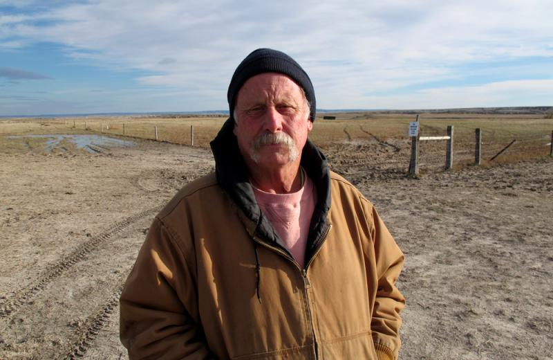 "Dave Moody pulled more than 120 cattle out of a deep ravine where they died during the blizzard. ""About the first 10 or 15 head you said, 'yuck.' Then it turned into a job and you just did it."""