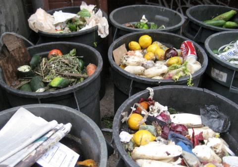 Americans wasted an estimated 133 billion pounds of food in 2010, according to a USDA study.