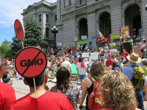 Anti-GMO protestors at a 2013 Denver, Colo., rally.