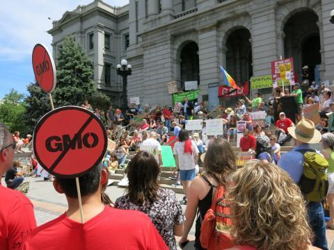 Anti-GMO protestors at a 2013 Denver, Colo., rally.