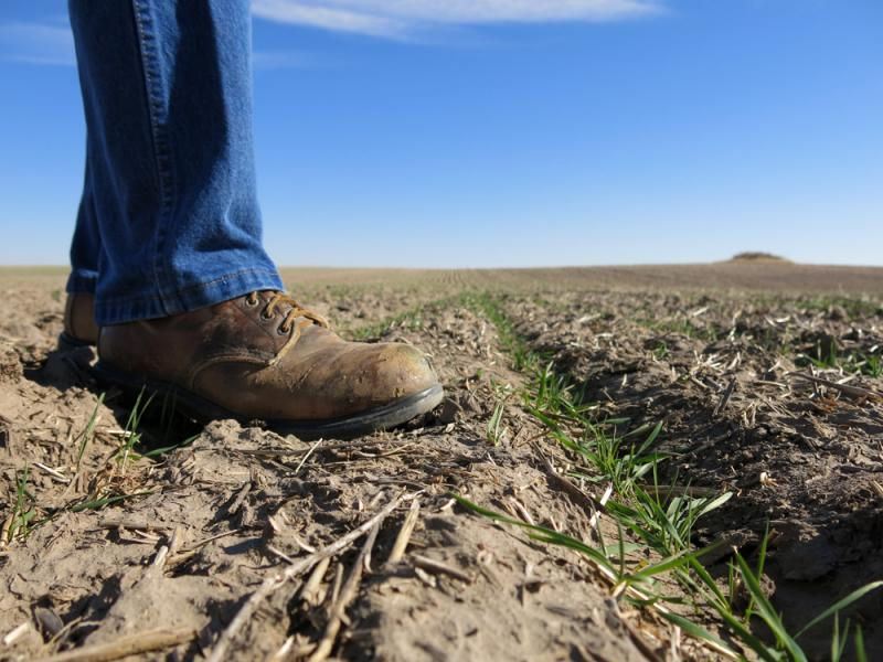Despite certainty on the farm bill finally coming down from Washington, Midwest farmers still face plenty of unknowns.